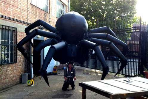 Spider  by Tim Davies