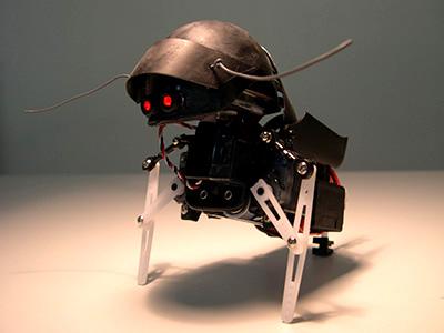 SwashBot 1