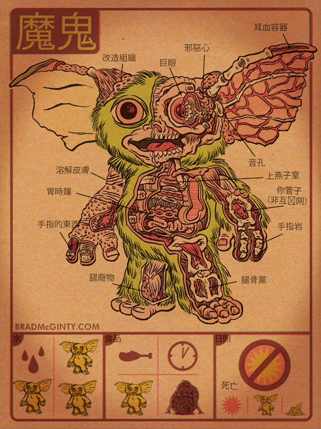 Anatomy Of The Mogwai by Brad McGinty