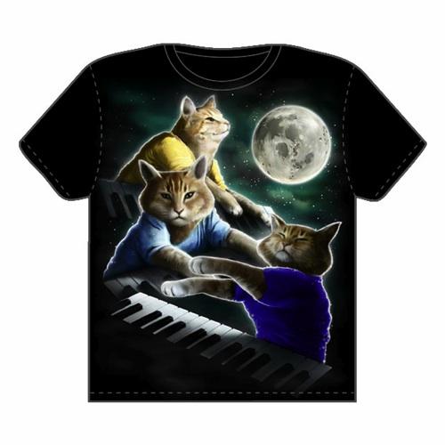 Three Keyboard Cat Moon