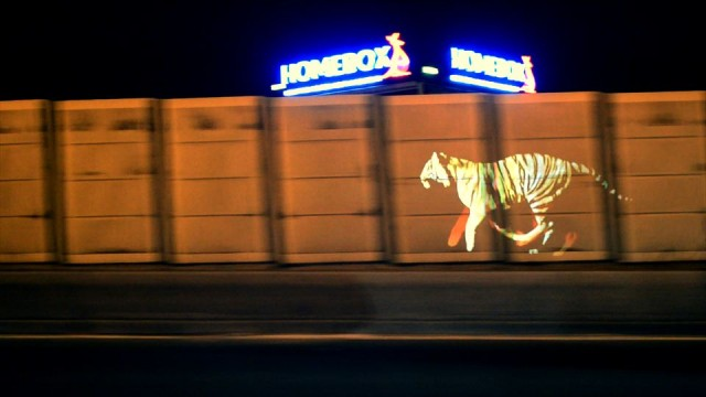 Golden Tiger projection by Le3