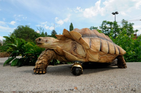 Tortoise's leg replaced with wheel