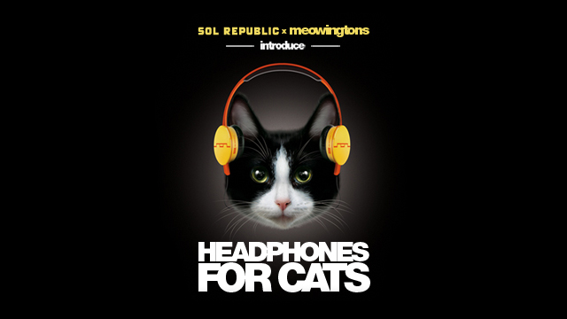 Sol Republic x Professor Meowingtons: World's First Headphones for Cats