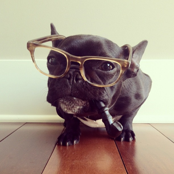 Glasses and pipe