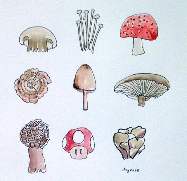 Mushrooms by Aymie Spitzer