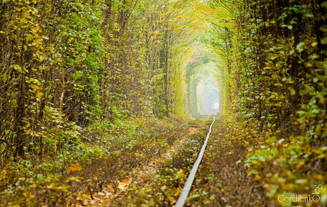 Tunnel of love photos by Oleg Gordienko