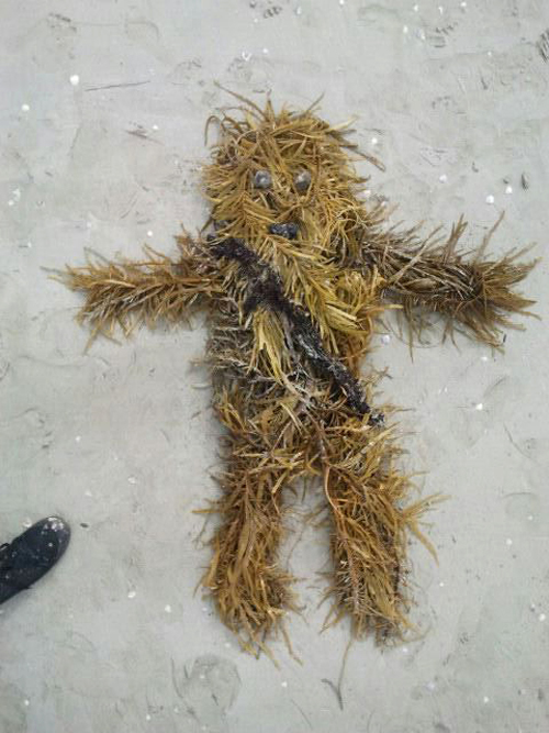 Chewbacca Made Out of Seaweed