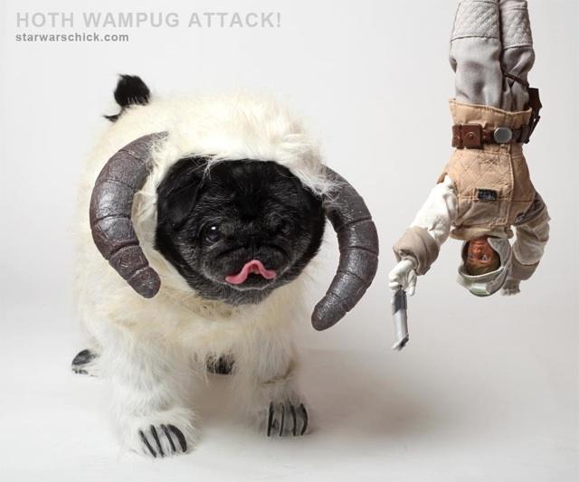 wampug