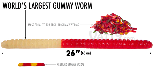 The World's Largest Gummy Worm/></a></p> <p><a href=