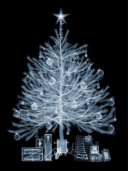 xray-christmas-tree