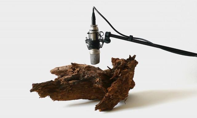 Mesmerizing Sound Sculptures by Zimoun